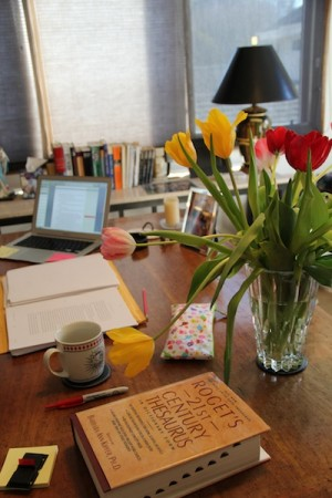 The Wednesday Daughters galleys with tulips and thesaurus